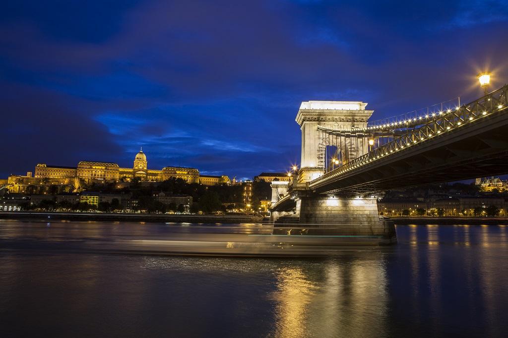 Buda Castle Chain Bridge Danube Tours