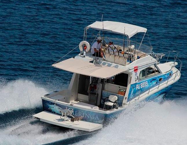 Tuna Drifting Day Trips